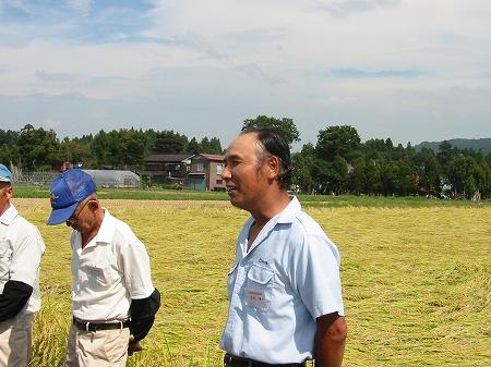 三和稲刈り体験ツアー2001