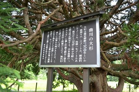 鮭川村訪問(2012.6.14)