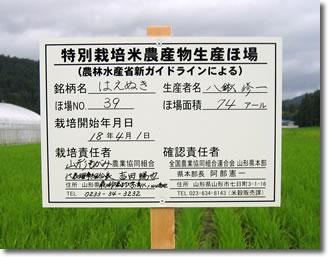 新米入荷予定(10/13)