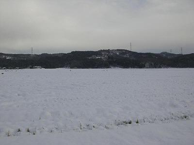 三和田んぼ情報(12/16)