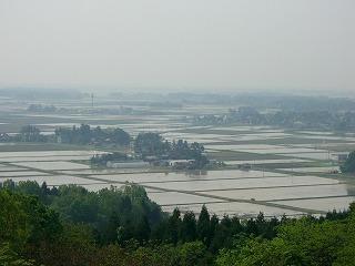 三和の田植え