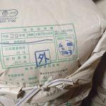 巨大胚芽玄米カミアカリ新米入荷(2017/10/28)